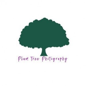 Plum Tree Photography - Photographer / Portrait Photographer in Lorain, Ohio