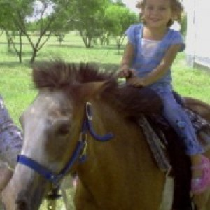 Ponies2you - Pony Party / Princess Party in Iowa Park, Texas