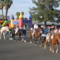 Pony Express Parties - Petting Zoos for Parties / Educational Entertainment in Las Vegas, Nevada