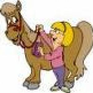 Pony Express Pony Parties