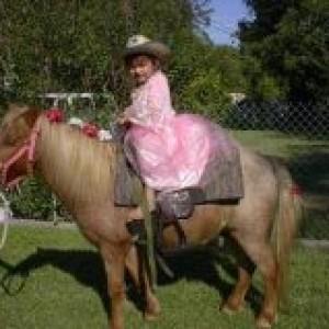 Pony Express Pony Rides