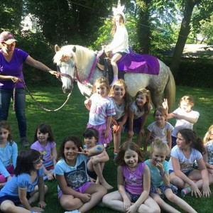 Pony Parties - Pony Party / Party Inflatables in Mullica Hill, New Jersey