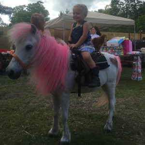 Pony rides and petting zoo - Pony Party in Hudson, Florida