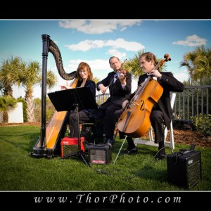 Pop Harpist Melody - Harpist in Daytona Beach, Florida