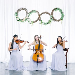 Premiere Wedding & Event Music Las Vegas - String Quartet / Harpist in Las Vegas, Nevada