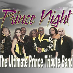 Prince Night - Party Band / Prom Entertainment in Canal Winchester, Ohio