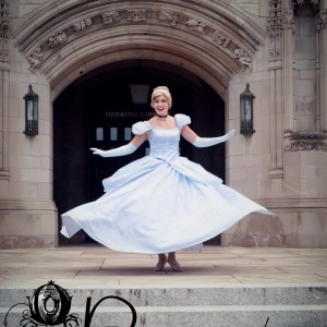 Princesscapades Princess Parties - Princess Party / Interactive Performer in Chicago, Illinois