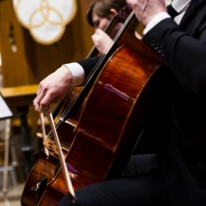 Professional Cellist - Cellist in Wheaton, Illinois