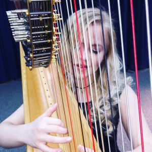 Professional Performer - Harpist in Moses Lake, Washington