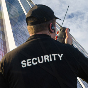 Professional Security - Event Security Services in Elk Grove, California