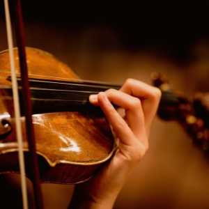 Professional Violinist Sila - Violinist / Wedding Entertainment in Raleigh, North Carolina