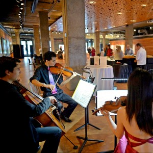Prospect Strings - Violinist / Classical Ensemble in Minneapolis, Minnesota