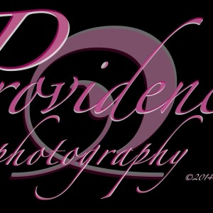 Providence Photography  - Photographer / Portrait Photographer in Mound, Minnesota