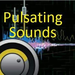 Pulsating Sounds DJ Entertainment - Mobile DJ / Outdoor Party Entertainment in Great Mills, Maryland