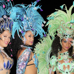 Pure Samba - Samba Dancer / Brazilian Entertainment in New York City, New York
