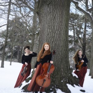 Quintessence Ensemble - Classical Ensemble / Classical Duo in Toronto, Ontario