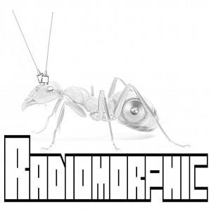Radiomorphic - Rock Band in Brisbane, California