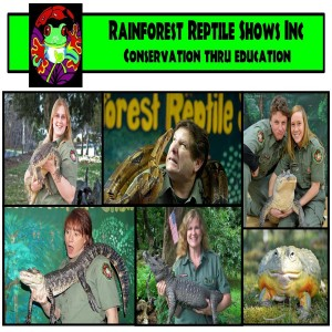 Rainforest Reptile Shows, Inc. - Reptile Show in Beverly, Massachusetts