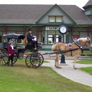 Rangerbelgians - Horse Drawn Carriage in Melbourne, Ontario