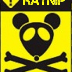 Ratnip - 1980s Era Entertainment in Nashville, Tennessee