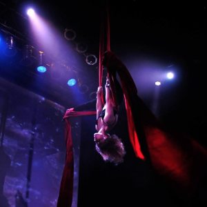 Rebecca Ann Henry - Aerialist in Seattle, Washington