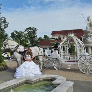 Regal - Horse Drawn Carriage / Holiday Party Entertainment in Oyster Bay, New York
