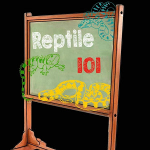 Reptile 101 - Animal Entertainment in Charlotte, North Carolina