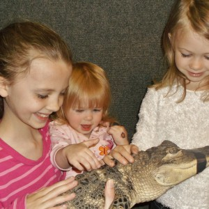 Reptile & Amphibian Discovery Zoo - Petting Zoo / College Entertainment in Owatonna, Minnesota