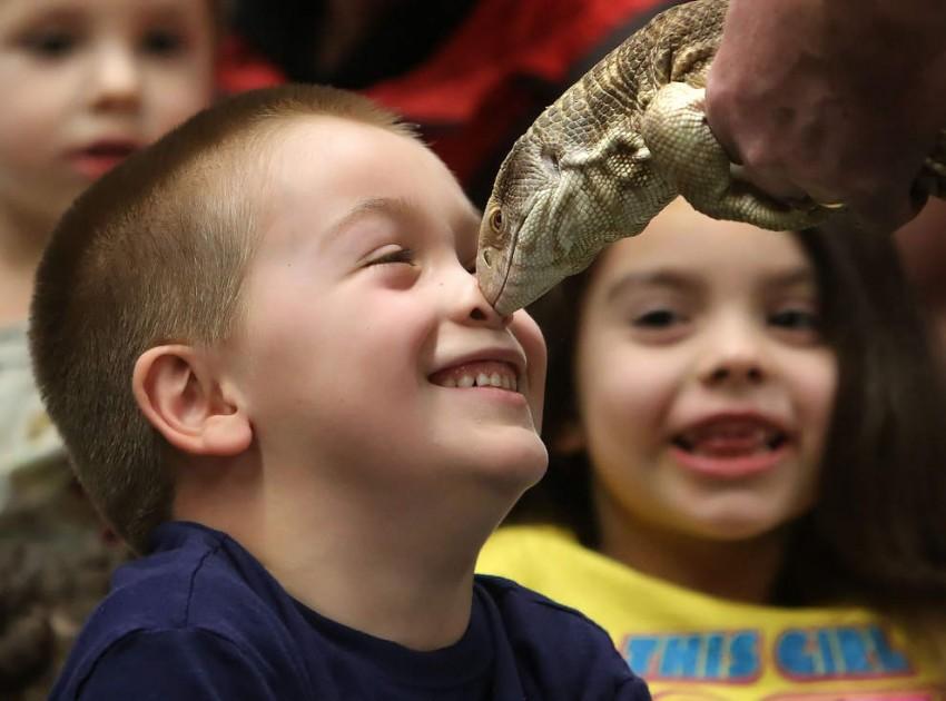Hire Reptile Man - Animal Entertainment in Portland, Oregon