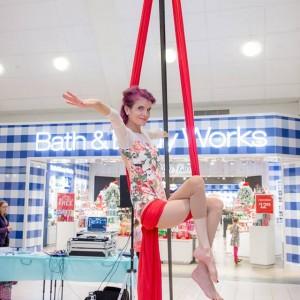 Robin Lynch - Aerialist / Circus Entertainment in Valhalla, New York