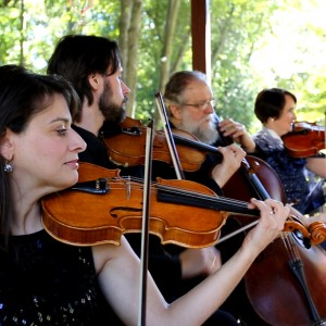 Rock Creek Strings - String Quartet in Brookeville, Maryland