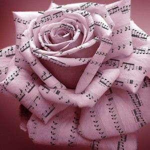 Rose Trio - Jazz Band / Wedding Musicians in Newport News, Virginia