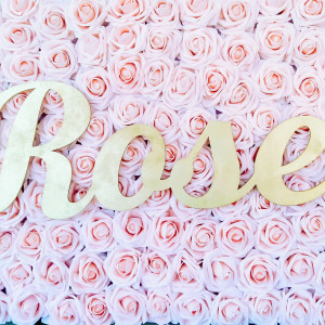 Rosepetaloccasions - Linens/Chair Covers / Party Decor in San Antonio, Texas