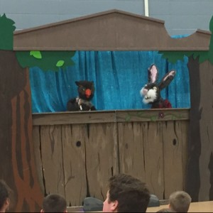 Rosewood Puppets - Puppet Show / Children's Party Entertainment in Hudson, Wisconsin
