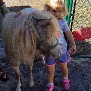 Paw Peeps - Pony Party / Animal Entertainment in Bradenton, Florida