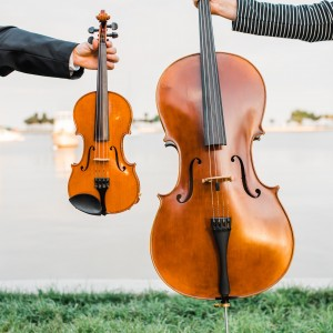 Sunset Strings - Violinist / Wedding Musicians in St Petersburg, Florida