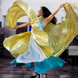 Saleeta Experience - Belly Dancer / Dancer in Dearborn, Michigan