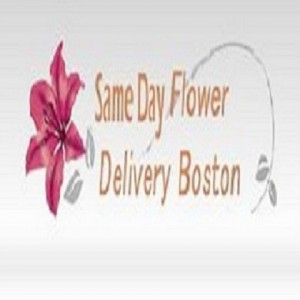 Same Day Flower Delivery Boston - Event Florist / Party Decor in Boston, Massachusetts