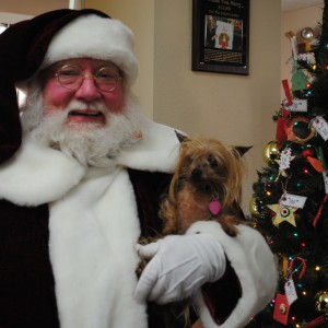 santa Bob - Santa Claus / Holiday Party Entertainment in Cathedral City, California