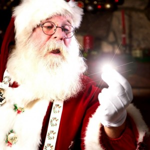 Papa Santa - Santa Claus / Actor in San Diego, California