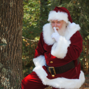 Reindeer Games LLC - Santa Claus in Marietta, Georgia