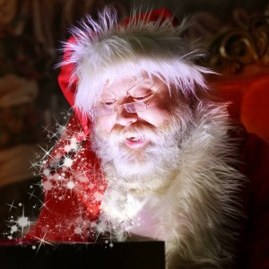 Santa Claus - Santa Claus / Holiday Entertainment in Parkersburg, West Virginia