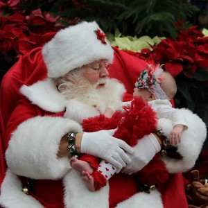 Santa Claus William - Santa Claus / Holiday Entertainment in Hanover Park, Illinois