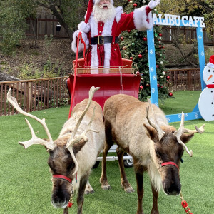 Santa August - Santa Claus in Long Beach, California