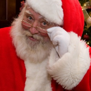 Santa Kris - Santa Claus / Voice Actor in Gainesville, Georgia
