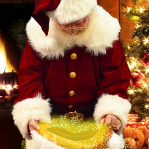 Santa Mark - Santa Claus / Actor in Gresham, Oregon