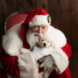 SantaLarry - Santa Claus / Holiday Entertainment in Franklin, Massachusetts