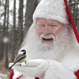 Santa's Agent - Santa Claus in Livonia, Michigan