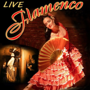 Sara Jerez - Flamenco - Flamenco Dancer / Flamenco Group in Washington, District Of Columbia