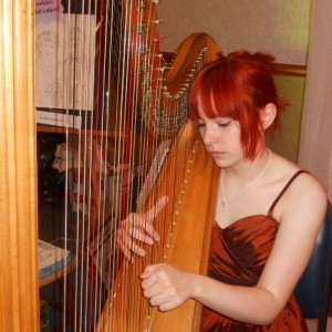 Sarah Clark, Harpist - Harpist / Celtic Music in Hubbard, Ohio